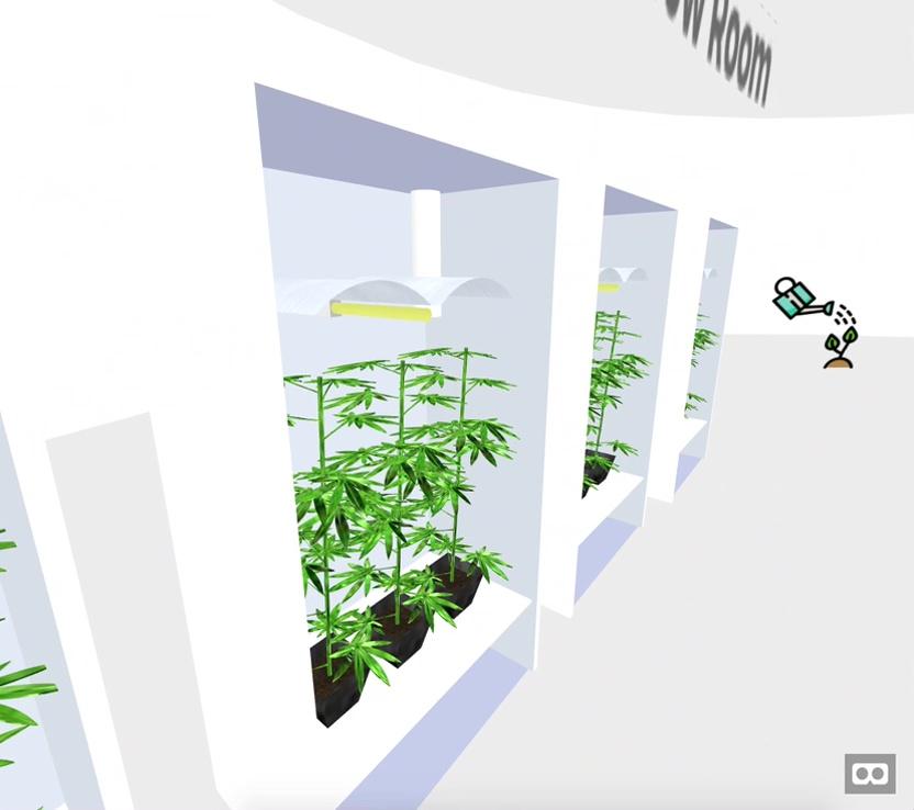 VR WEED