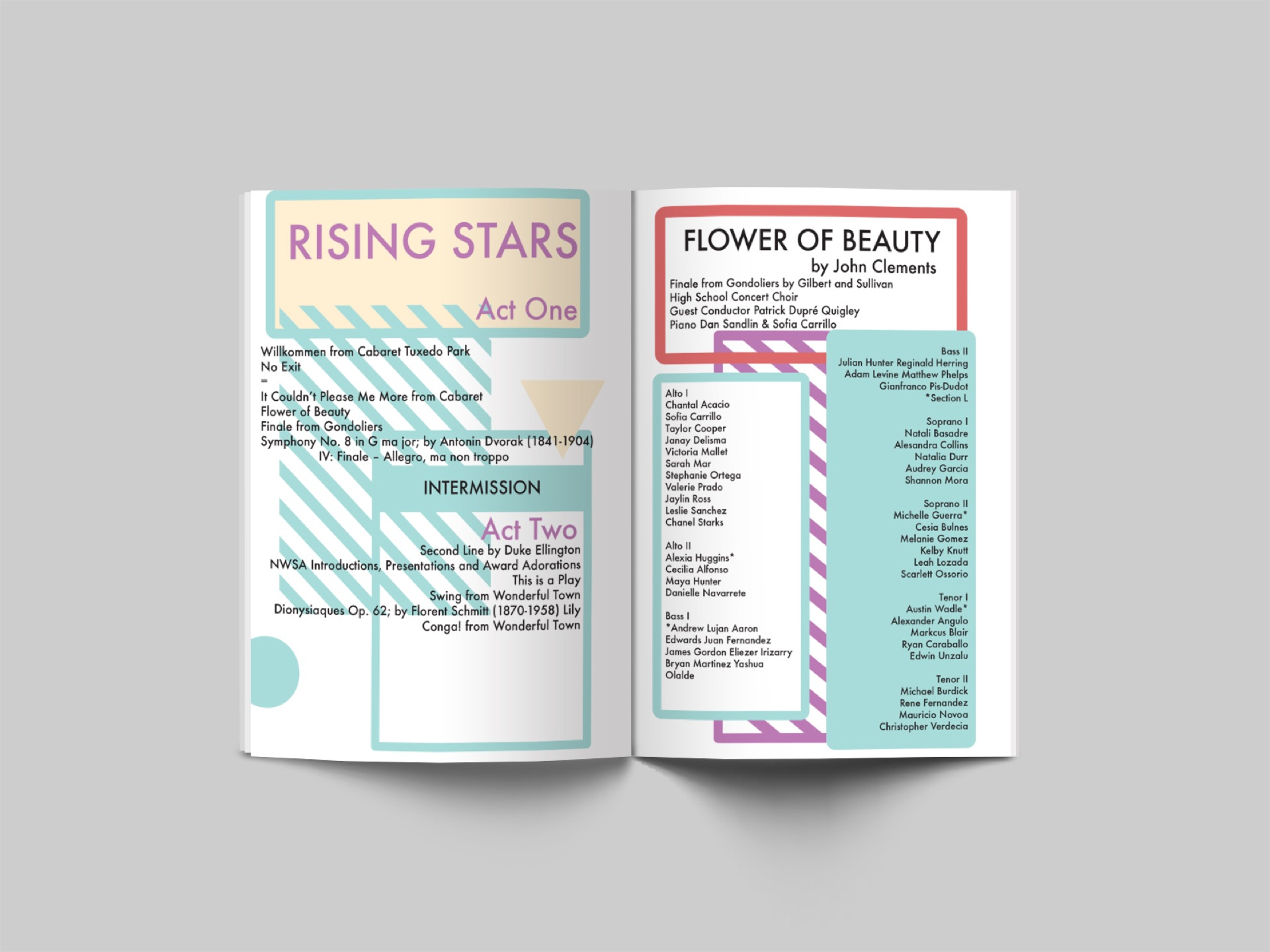 Rising Stars Brochure Stay Regular
