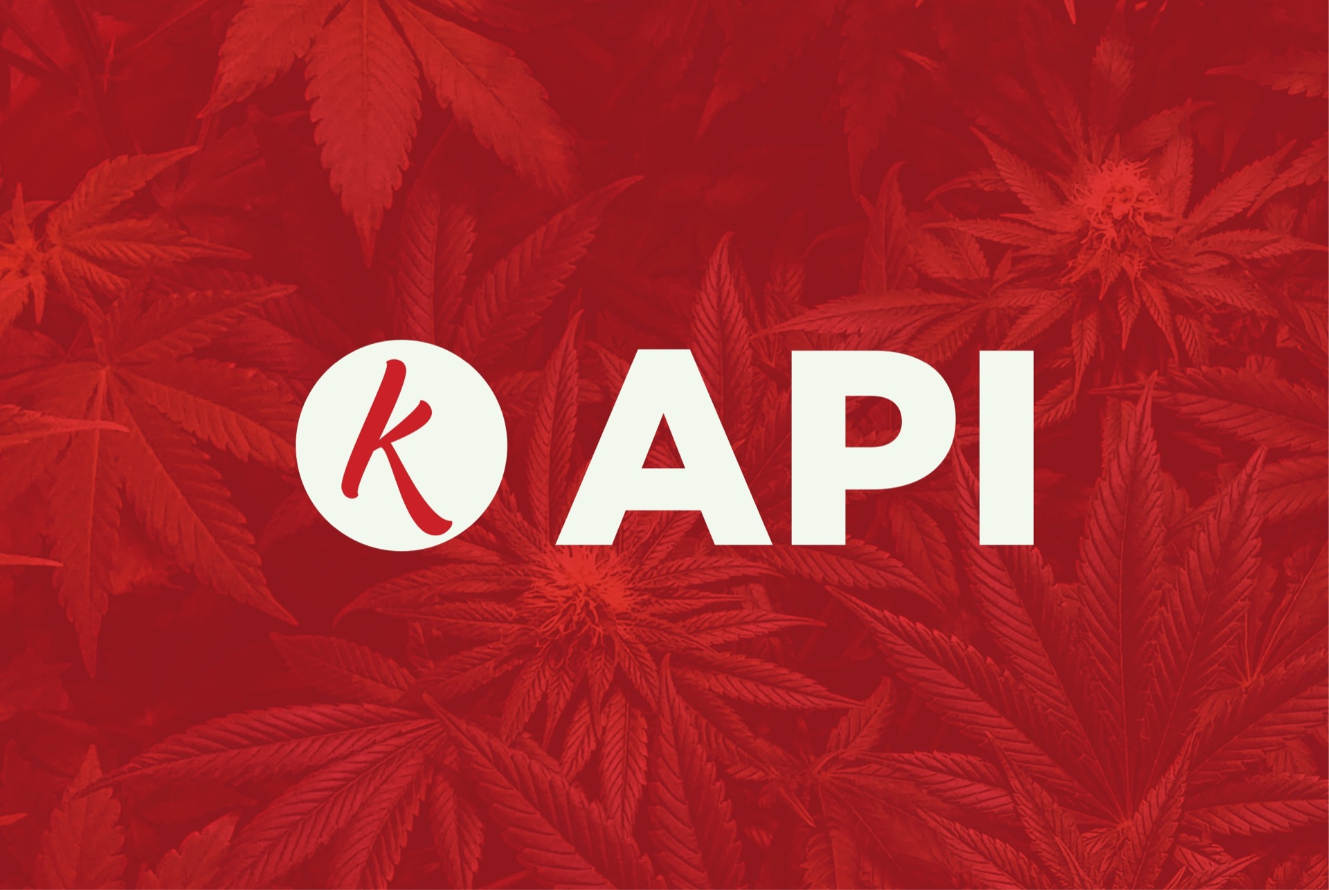 Requesting Weed From Kushy's Open Source Cannabis API | Stay